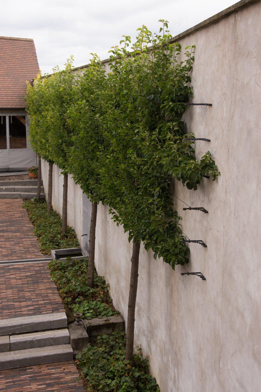 Hof der Heerlijckheid - outdoor binnenkoer 7